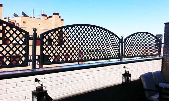 11 celosia terraza